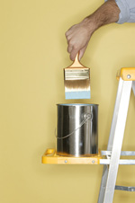 Lake Norman Professional Painters